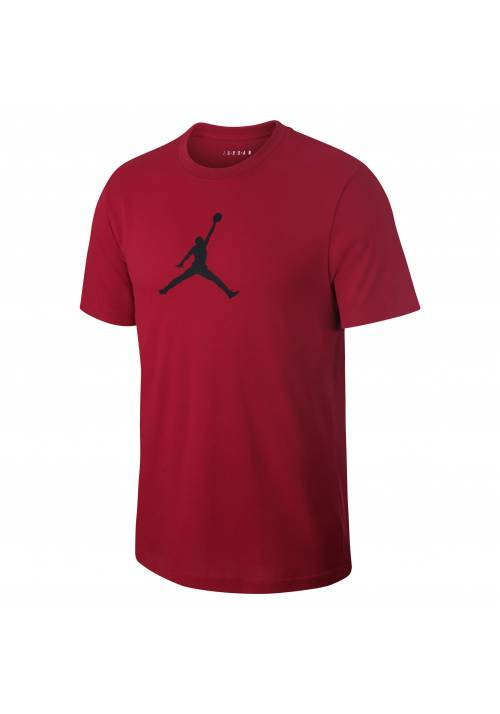 CAMISETA JORDAN JUMPMAN ICON 687
